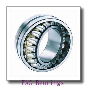 170 mm x 360 mm x 120 mm  FAG NJ2334-EX-M1+HJ2334-EX cylindrical roller bearings