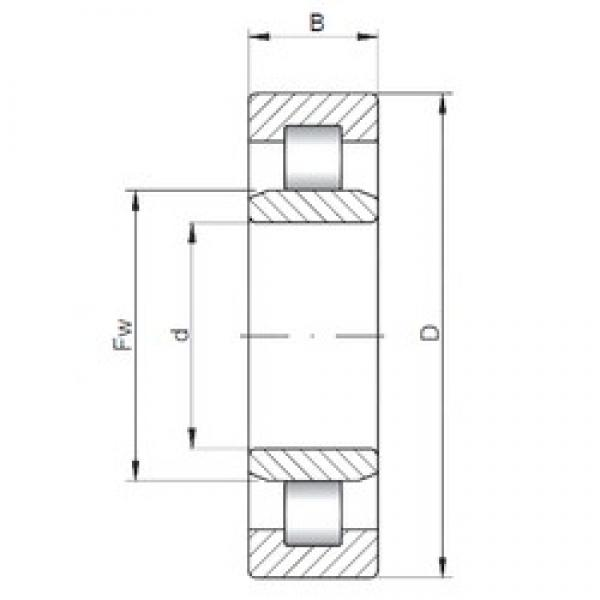105 mm x 160 mm x 26 mm  ISO NU1021 cylindrical roller bearings #2 image