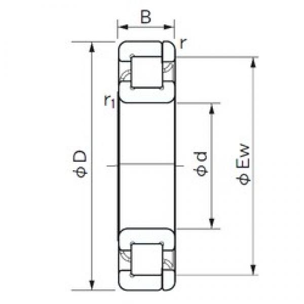 130 mm x 230 mm x 40 mm  NACHI NP 226 cylindrical roller bearings #2 image